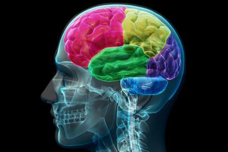 Cvičení pro mozek snižuje riziko stařecké demence