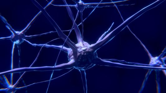 Parkinsonovu chorobu je možné zjistit roky před jejím propuknutím